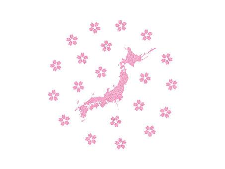 桜の花びらで構成された日本地図