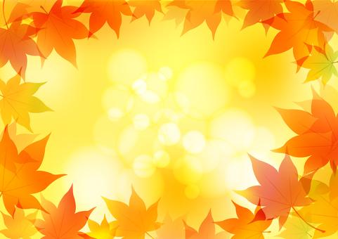 Fall image material 43