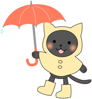 Black cat in the rainy season