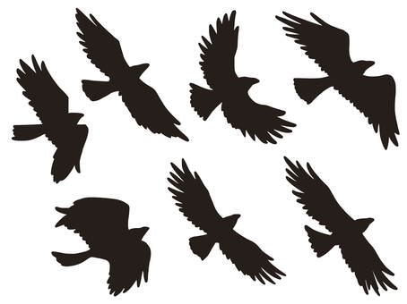 7 crows silhouette