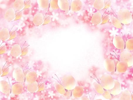 Butterflies in flowers 3