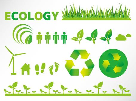 A044. Ecology