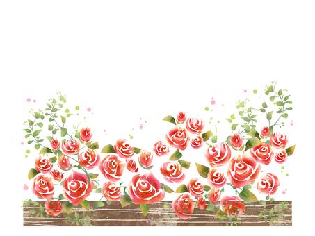 薔薇 09