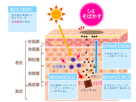 Spot freckle generation mechanism