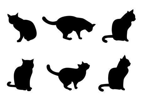 고양이의 실루엣