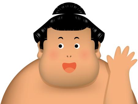 Sumo wrestling hands