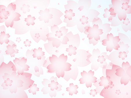 Cherry blossom snowstorm background illustration