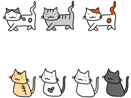 고양이 많이