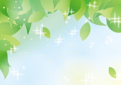 Fresh green _ 03