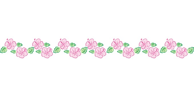 Hibiscus 06 - line - pink