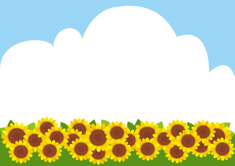 Sunflower with blue sky and clouds