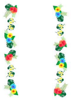 Tropical frame 05