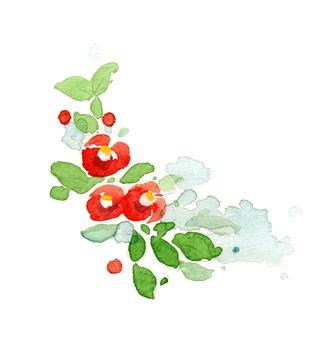 Camellia ②