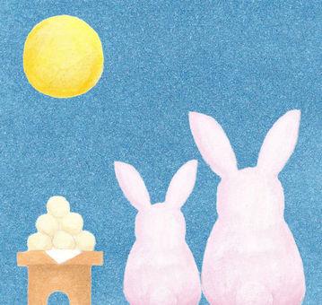 Rabbit watching rabbit