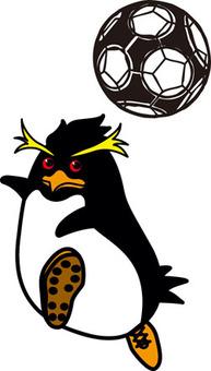 Soccer / Penguin