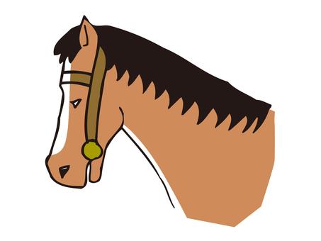 Horse's profile
