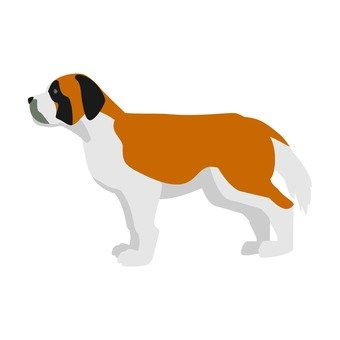 Dog - St. Bernard