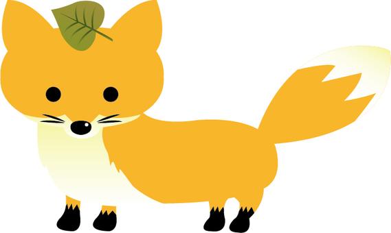 Fox illustrations