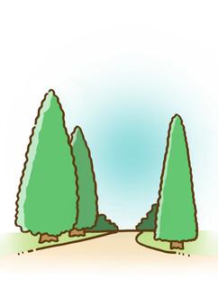 綠樹成蔭的大道