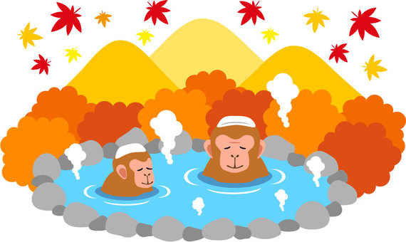 Monkey and hot spring autumn