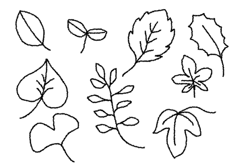 Various forms of leaves
