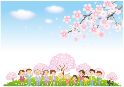 Cherry blossoms and people enjoying it