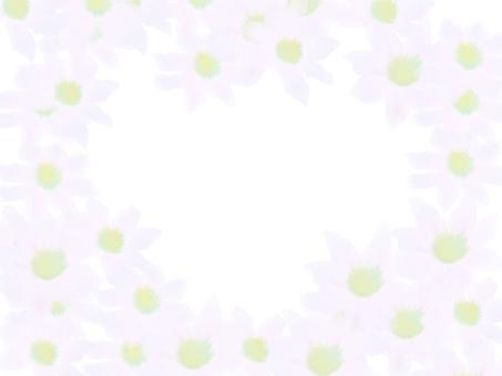 클레 마티스 흰색 프레임