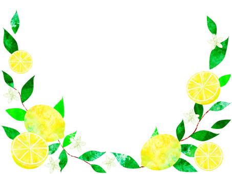 레몬 _ 프레임 02