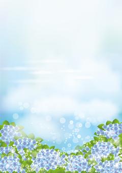 青空&繡球34