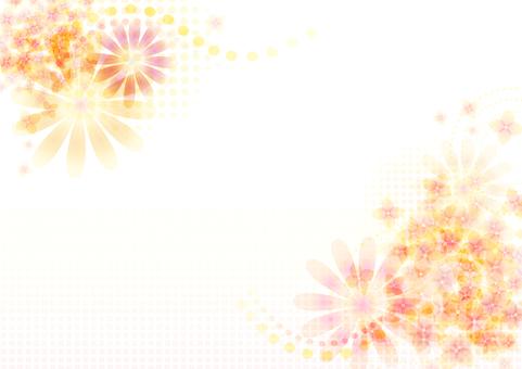 花卉圖片4
