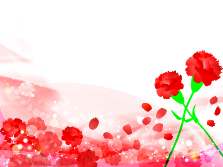 Carnation background 17022303