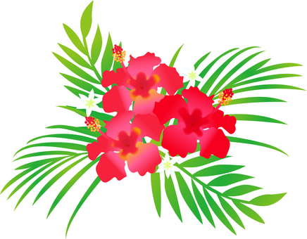 Hibiscus and palm leaves