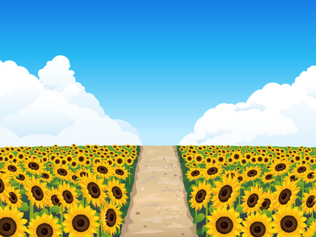 (RGB) Summer sunflower field and whirlpool background 04
