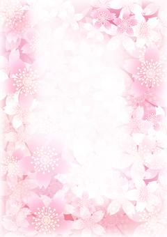 さくらの花191