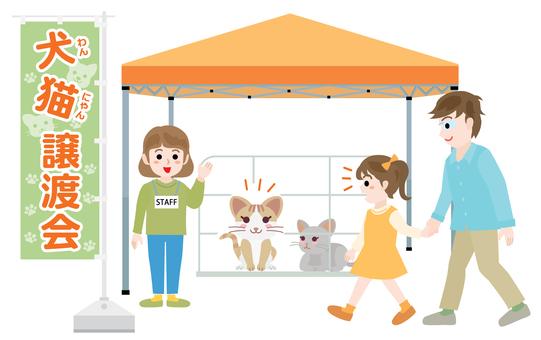 Take me to the transfer party 01_ orange