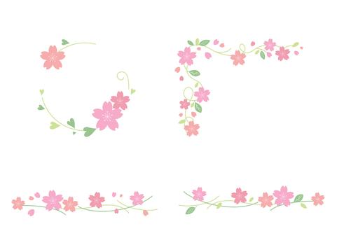 Cherry blossoms 136