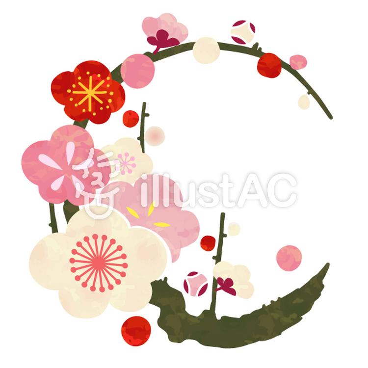 花丸紋様(梅)のイラスト