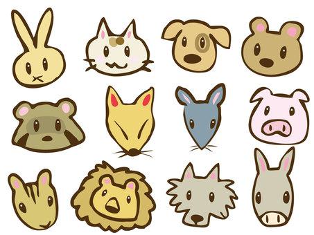 동물의 얼굴
