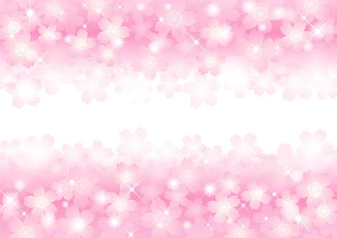벚꽃의 프레임 35