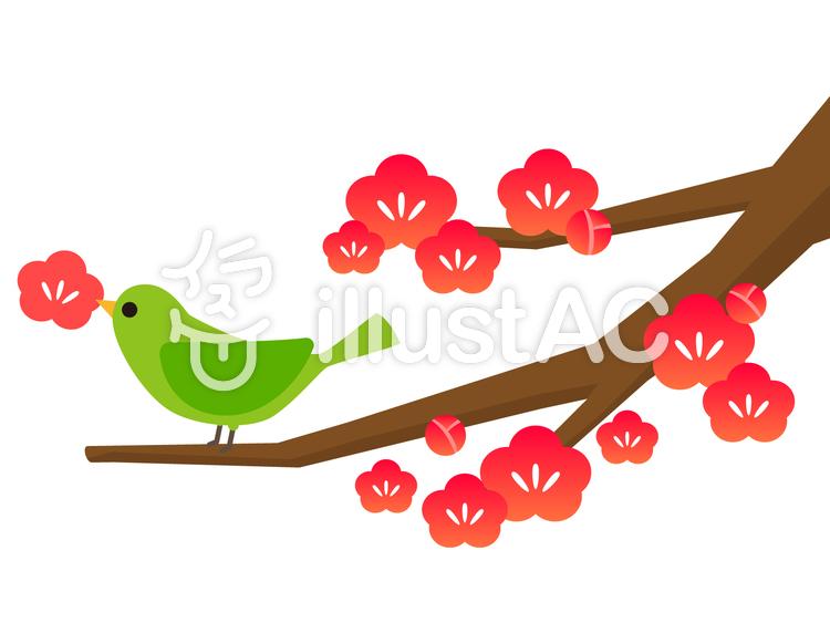 梅の木と花をくわえたウグイス可愛いイラスト No 363803無料