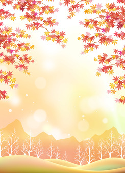 Autumn leaves Maple Autumn satoyama