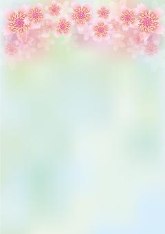 Splendid flowers 252