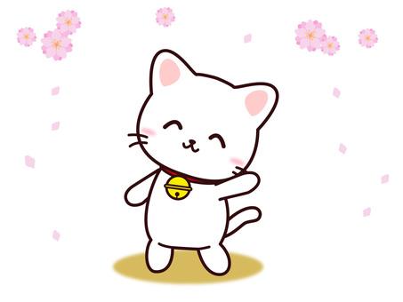 Neko (peach blossom)