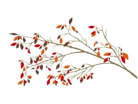 Cherry branch autumn