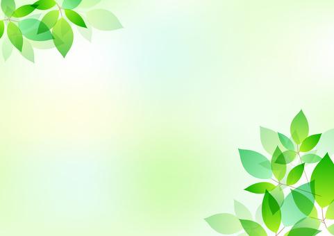Fresh green material 17