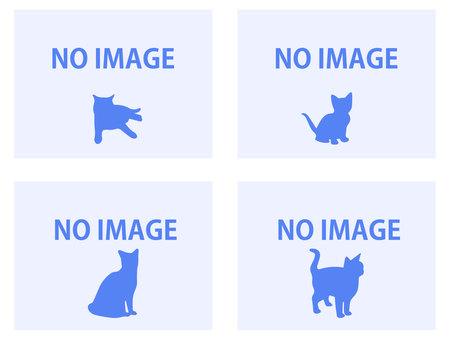 noimage image cat 2