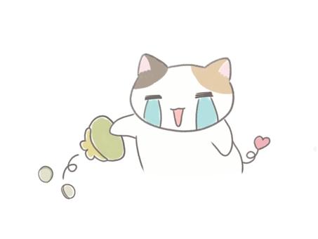 Poor calico cat