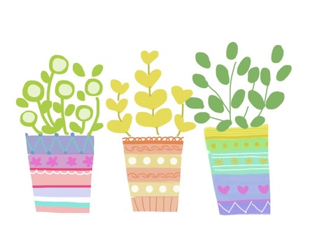 Colorful potted plants