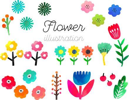 手繪水彩風格花卉插圖集