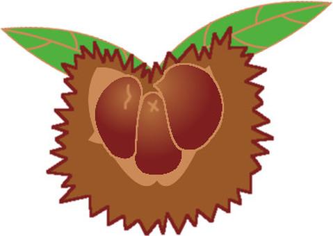 Chestnut-attached -1